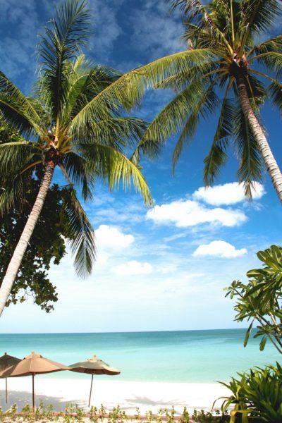 activities Samui island
